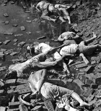 A site of mass massacre of Intellectuals, Mirpur